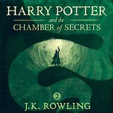 Harry Potter and the Chamber of Secrets J K Rowling | Shortrounds Knitwear